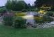 Abendaufnahmen Teich 1